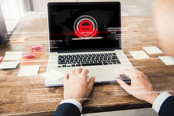 malware-net4shield-empresas