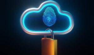 Seguridad en los datos suministrados por parte de los usuarios en los servicios hoteleros.